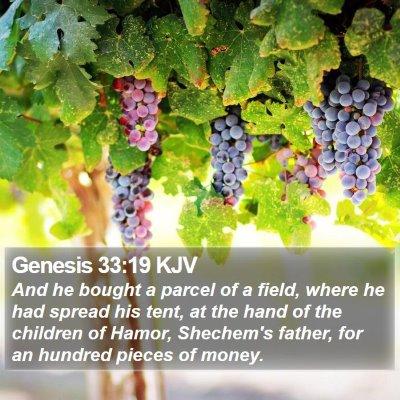 Genesis 33:19 KJV Bible Verse Image