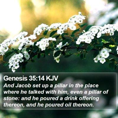 Genesis 35:14 KJV Bible Verse Image