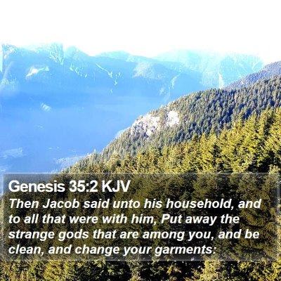 Genesis 35:2 KJV Bible Verse Image