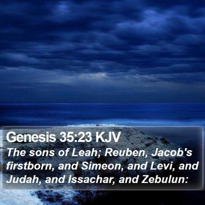 Genesis 35:23 KJV Bible Verse Image