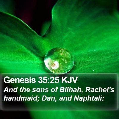 Genesis 35:25 KJV Bible Verse Image