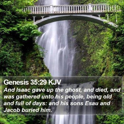 Genesis 35:29 KJV Bible Verse Image