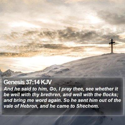 Genesis 37:14 KJV Bible Verse Image