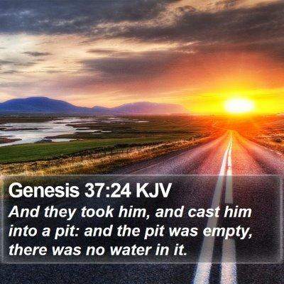 Genesis 37:24 KJV Bible Verse Image