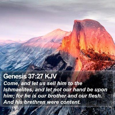 Genesis 37:27 KJV Bible Verse Image