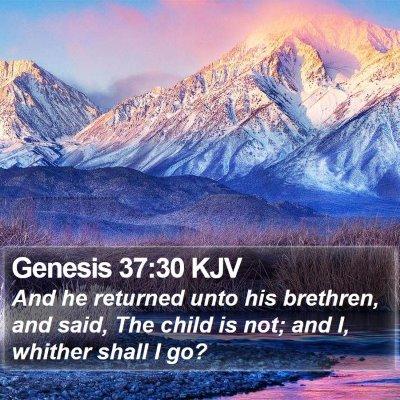Genesis 37:30 KJV Bible Verse Image