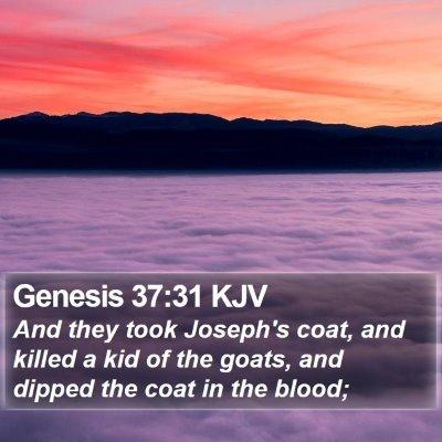 Genesis 37:31 KJV Bible Verse Image