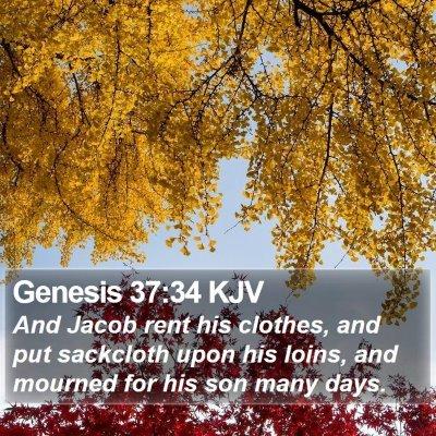 Genesis 37:34 KJV Bible Verse Image