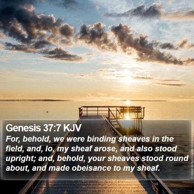 Genesis 37:7 KJV Bible Verse Image