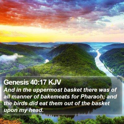 Genesis 40:17 KJV Bible Verse Image
