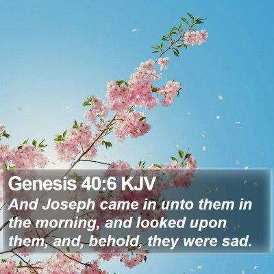 Genesis 40:6 KJV Bible Verse Image