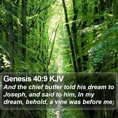 Genesis 40:9 KJV Bible Verse Image