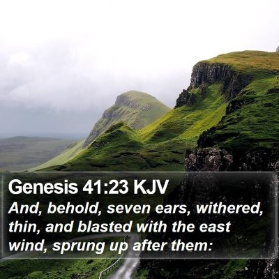Genesis 41:23 KJV Bible Verse Image