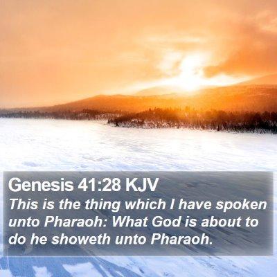 Genesis 41:28 KJV Bible Verse Image