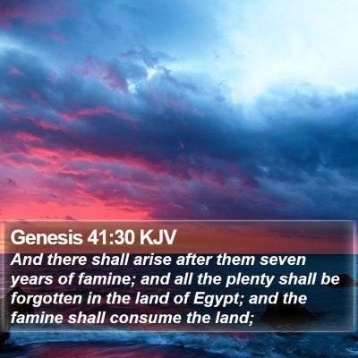 Genesis 41:30 KJV Bible Verse Image