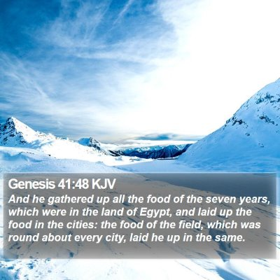 Genesis 41:48 KJV Bible Verse Image