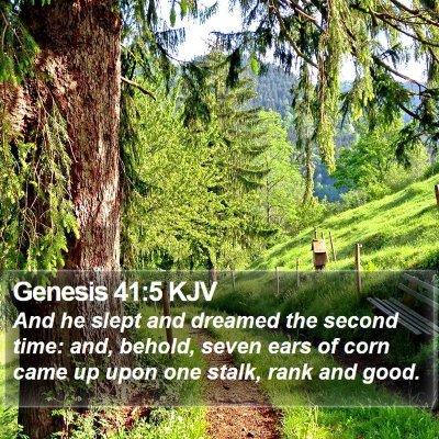 Genesis 41:5 KJV Bible Verse Image