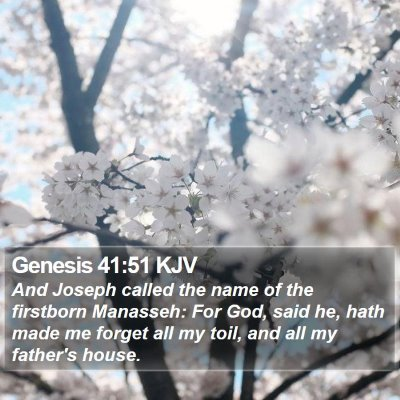 Genesis 41:51 KJV Bible Verse Image