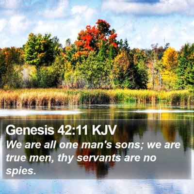 Genesis 42:11 KJV Bible Verse Image