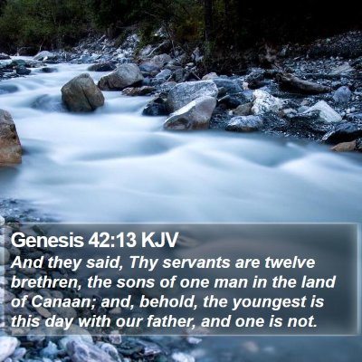 Genesis 42:13 KJV Bible Verse Image