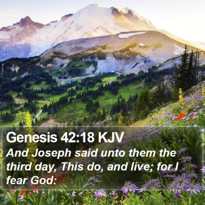 Genesis 42:18 KJV Bible Verse Image