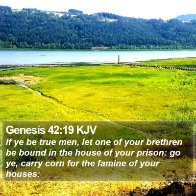 Genesis 42:19 KJV Bible Verse Image