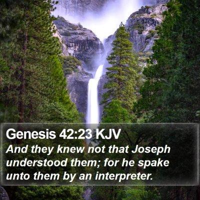 Genesis 42:23 KJV Bible Verse Image