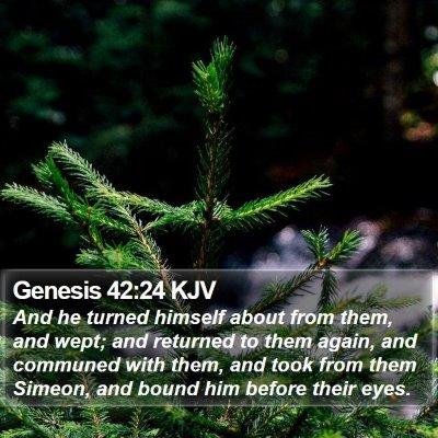 Genesis 42:24 KJV Bible Verse Image