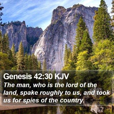 Genesis 42:30 KJV Bible Verse Image