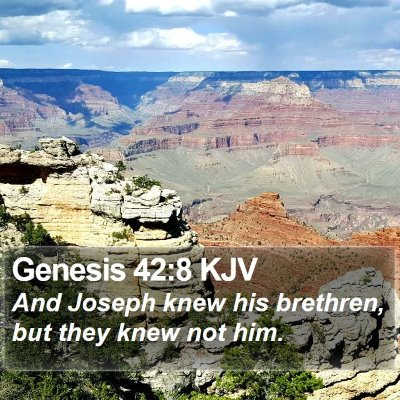 Genesis 42:8 KJV Bible Verse Image