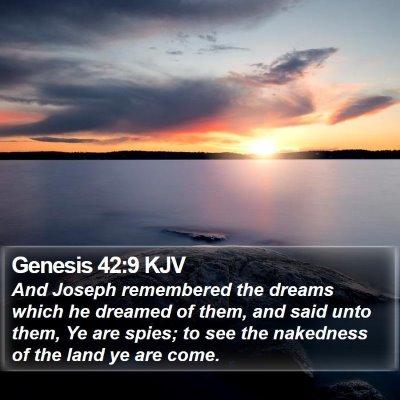 Genesis 42:9 KJV Bible Verse Image