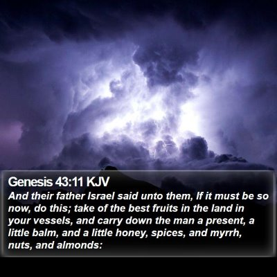 Genesis 43:11 KJV Bible Verse Image