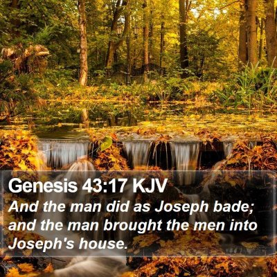 Genesis 43:17 KJV Bible Verse Image