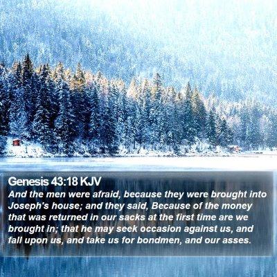 Genesis 43:18 KJV Bible Verse Image