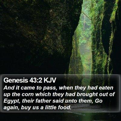 Genesis 43:2 KJV Bible Verse Image