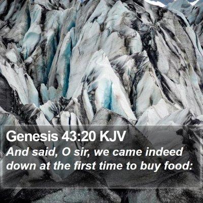Genesis 43:20 KJV Bible Verse Image