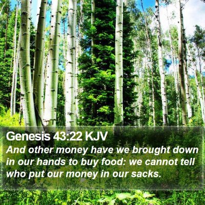 Genesis 43:22 KJV Bible Verse Image