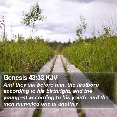 Genesis 43:33 KJV Bible Verse Image