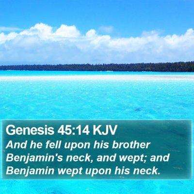 Genesis 45:14 KJV Bible Verse Image