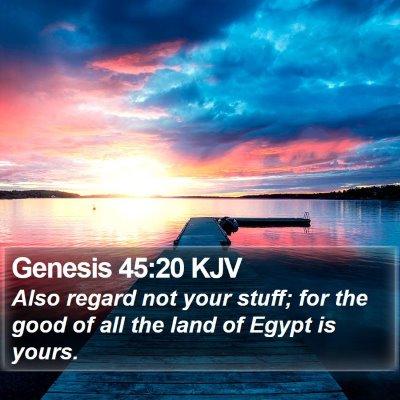 Genesis 45:20 KJV Bible Verse Image