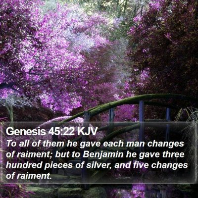 Genesis 45:22 KJV Bible Verse Image