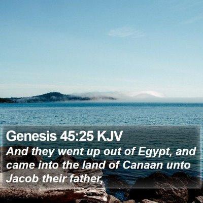Genesis 45:25 KJV Bible Verse Image