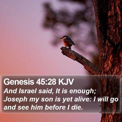 Genesis 45:28 KJV Bible Verse Image