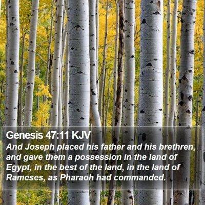 Genesis 47:11 KJV Bible Verse Image