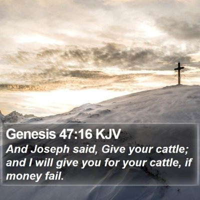 Genesis 47:16 KJV Bible Verse Image
