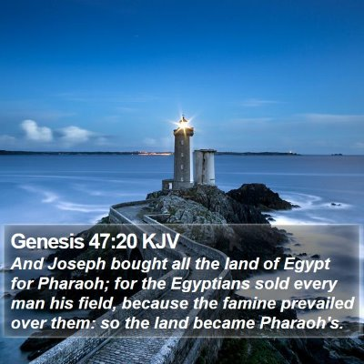 Genesis 47:20 KJV Bible Verse Image
