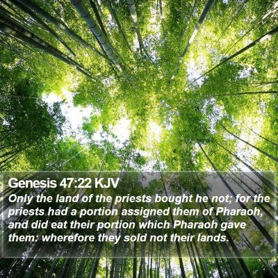 Genesis 47:22 KJV Bible Verse Image