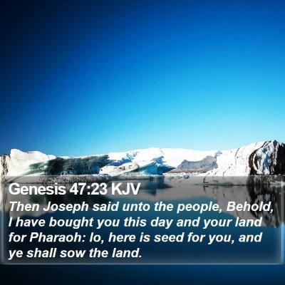 Genesis 47:23 KJV Bible Verse Image
