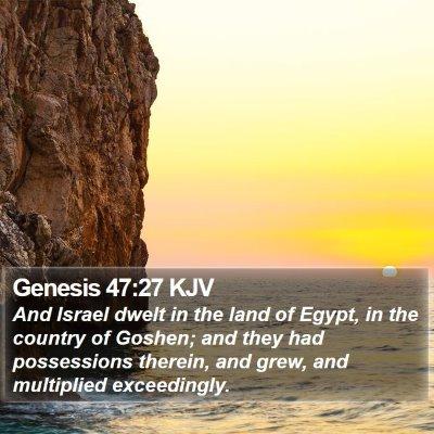 Genesis 47:27 KJV Bible Verse Image