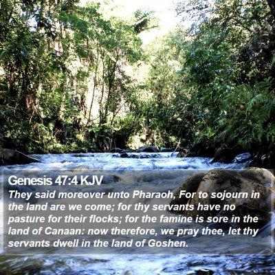Genesis 47:4 KJV Bible Verse Image